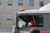 2012-maibaum-028-img_6554