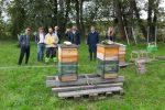 LUKOIL erhält Auszeichnung für Bienenschutz und naturnahe Gartengestaltung